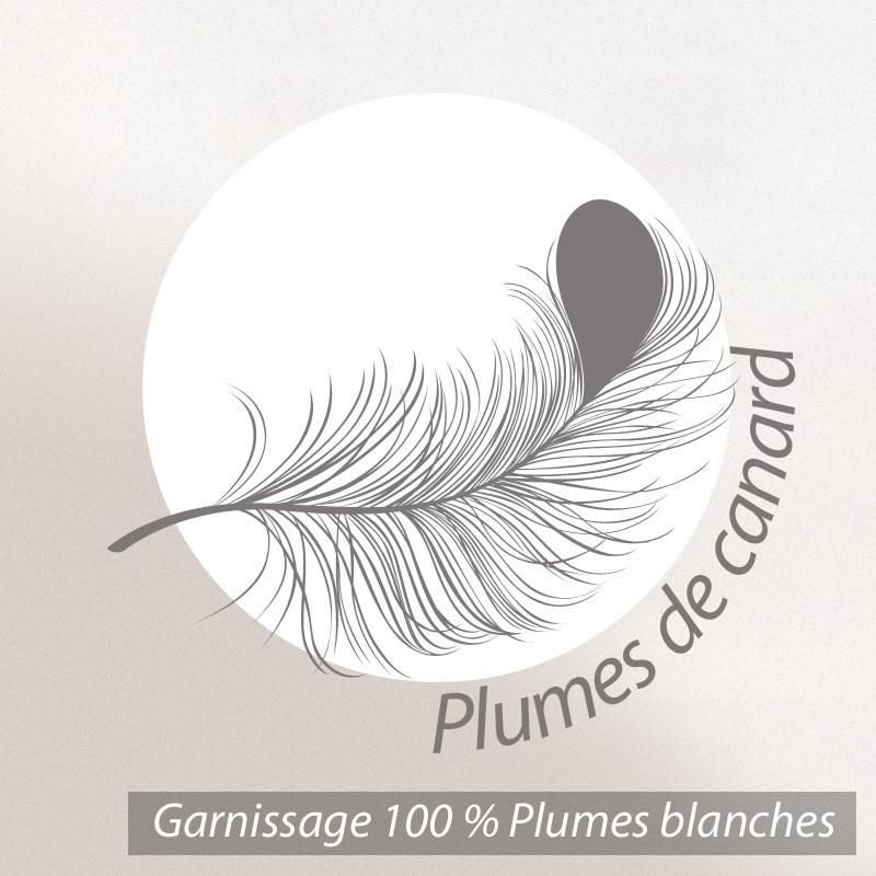 Oreiller-70x45-GRIZZ-039-LIT-PLUMES-100-Plumes-de-Canard