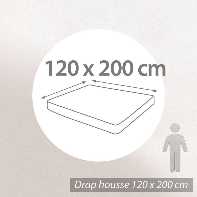 Drap housse 120x200cm uni pur coton ALTO