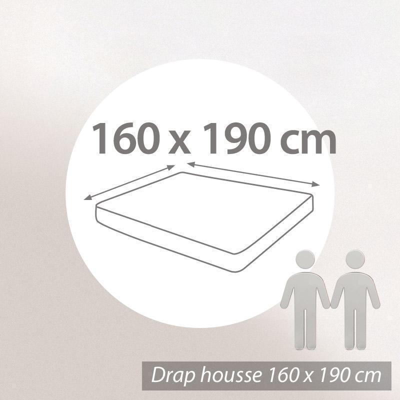Drap housse uni 160x190 cm 100% coton ALTO