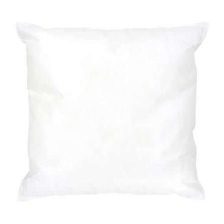 Coussin à recouvrir 40x40 cm, garnissage Fibres polyester - coussin Malin
