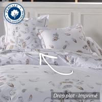 Drap plat 180x290 cm Percale pur coton PLUMES