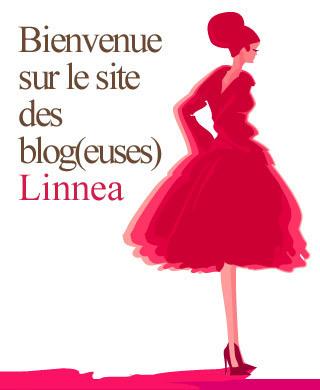 Les Blogeuses